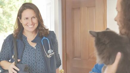 Stillwaters Veterinary Care owner Dr. Annette Otis