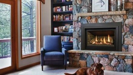 A Cozy Hearth and Fireplace with dog